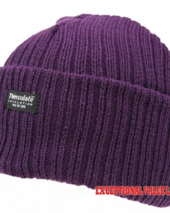LADIES THINSULATE BEANIE HAT FLEECE LINED WINTER SKI RIB KNITTED CAP ... f1f354a7525