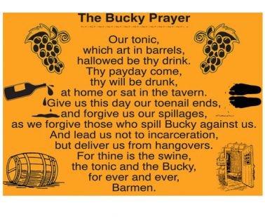 Buckfast Drink Blame it on the Bucky Adult Unisex T-Shirt